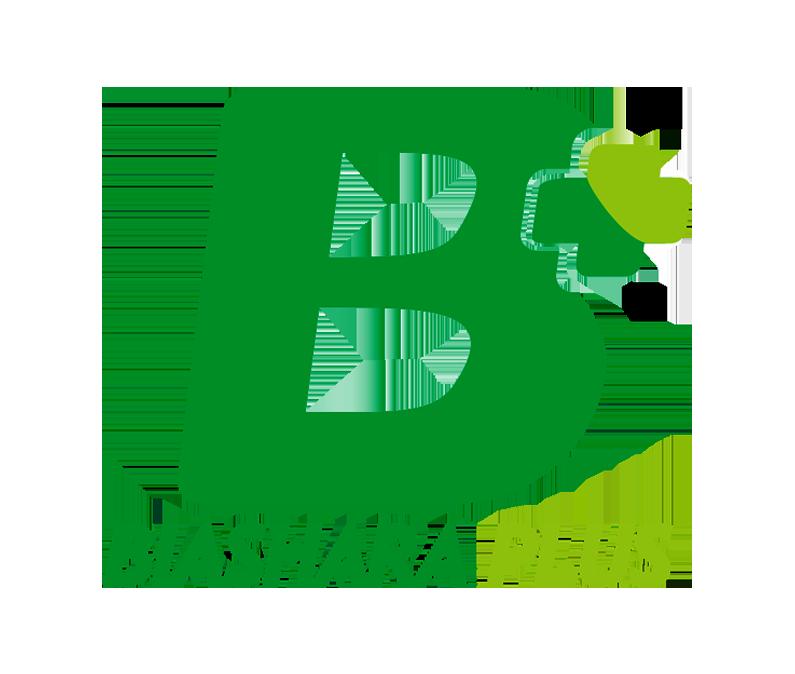 BiasharaPlus Logo